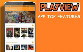 Features of Playview